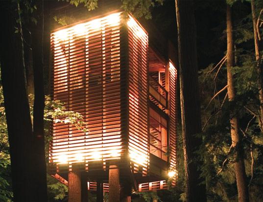 4 Tree House