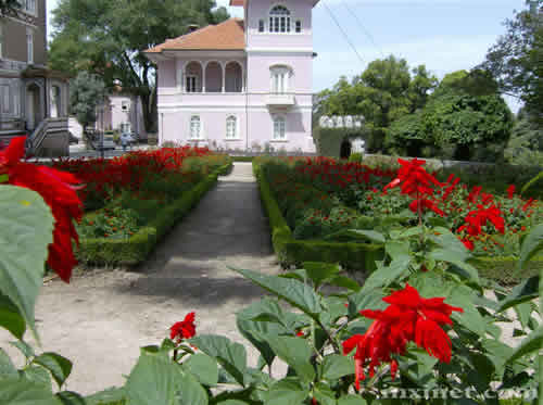 Palacio Bussaco Jardim Fundos