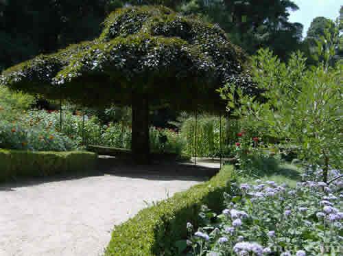 Palacio Bussaco Jardim
